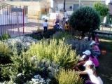 Φως και χρώμα στην αυλή του σχολείου μας!!